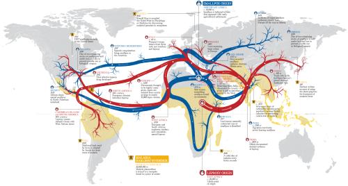 Disease Flow Map Haisam Hussein