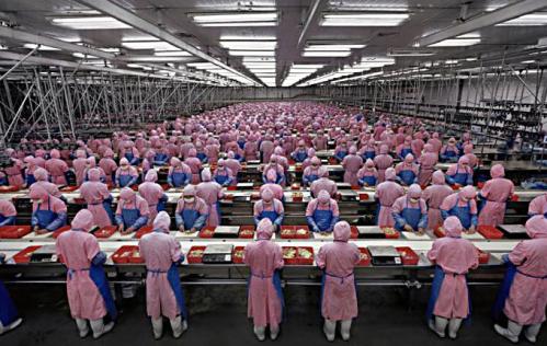 iSlave-iPhone-5-Foxconn